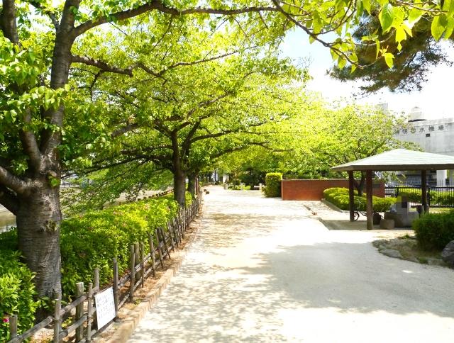 日光街道草加松原
